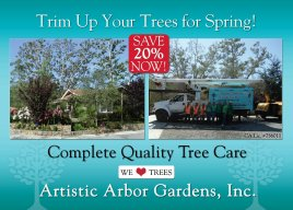Trim Up Your Trees for Spring!